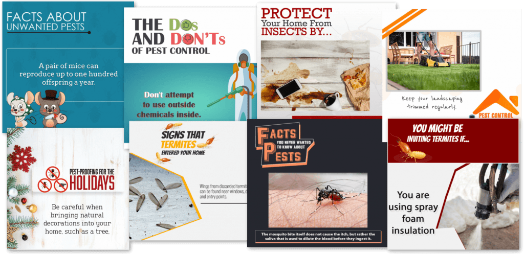 facebook posting for pest control service